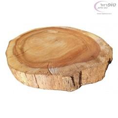 """פרוסת גזע עץ סיסם הודי בקוטר ממוצע של 40 ס""""מ ובעובי 6 ס""""מ."""