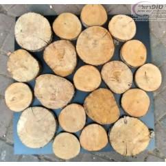 """פרוסות עץ אורן / ברוש טבעי קוטר 8-15 ס""""מ  עובי כ 2-3 סמ למבחר יישומים"""