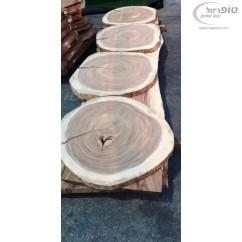 טבעת עץ מונקי פוד , קוטר כ 90 - 100 סמ בעובי 5 סמ. עץ קשה עם ליבה חומה.